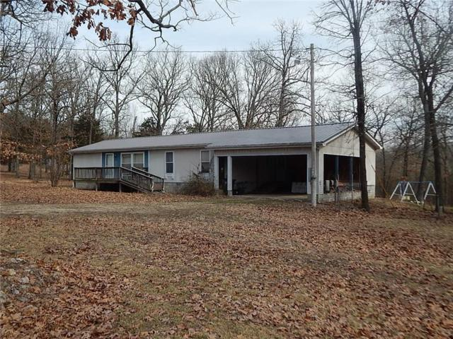 453 County Road 6561, Berryville, AR 72616 (MLS #1104043) :: McNaughton Real Estate