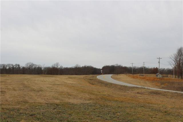 0 State Hwy 90, Noel, MO 64854 (MLS #1104499) :: McNaughton Real Estate