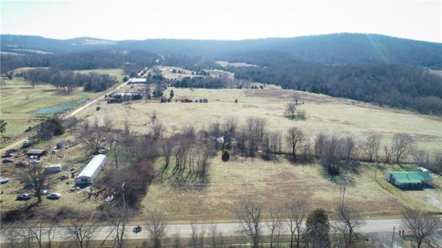 11867 & 11829 & Xxx  W Hwy 156, West Fork, AR 72774 (MLS #1104534) :: McNaughton Real Estate
