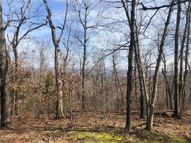 229 County Road  915, Green Forest, AR 72638 (MLS #1104985) :: McNaughton Real Estate