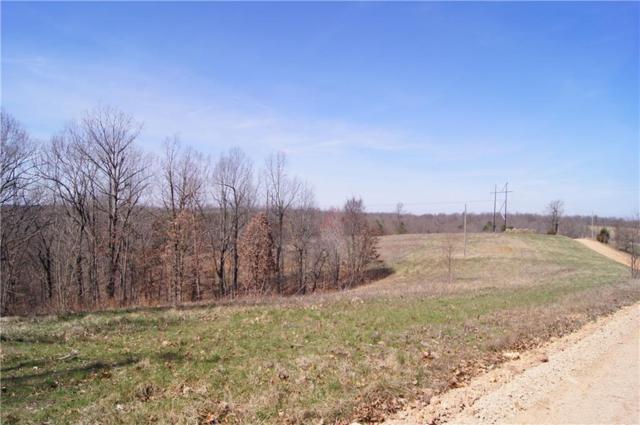 0 Low Gap  Rd, Noel, MO 64854 (MLS #1108586) :: HergGroup Arkansas