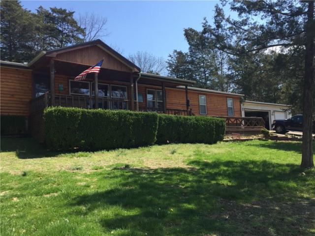 22530 Shawnee  Dr, Golden, MO 65658 (MLS #1108921) :: McNaughton Real Estate
