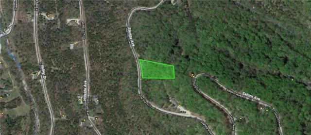 TBD Starlite Avenue, Holiday Island, AR 72631 (MLS #1110779) :: Jessica Yankey | RE/MAX Real Estate Results
