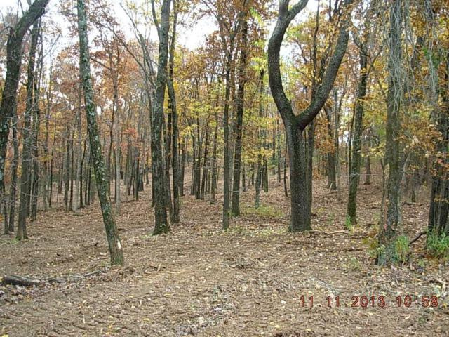 Hwy 170, West Fork, AR 72774 (MLS #1111412) :: McNaughton Real Estate