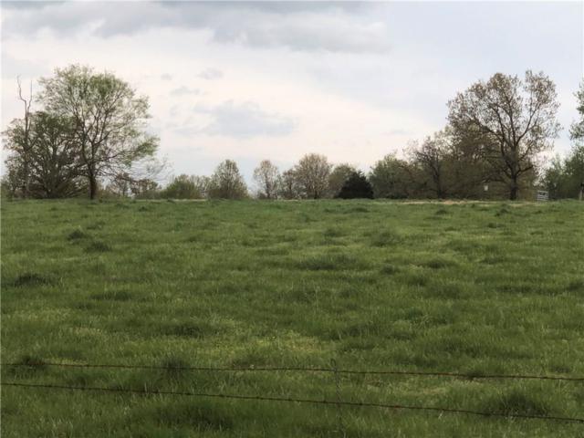 Noah, Centerton, AR 72719 (MLS #1111423) :: McNaughton Real Estate