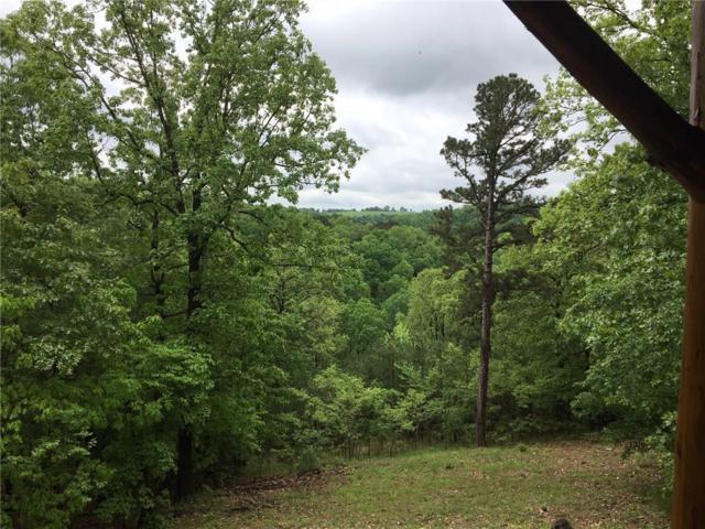338 Silver Ridge  Rd, Eureka Springs, AR 72632 (MLS #1113722) :: Five Doors Network Northwest Arkansas