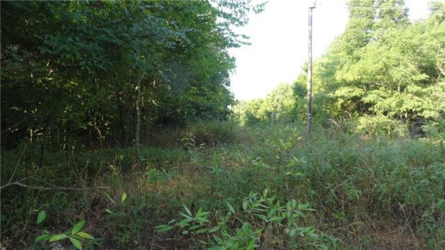 25 Ac Bowen  Blvd, Goshen, AR 72735 (MLS #1113970) :: McNaughton Real Estate