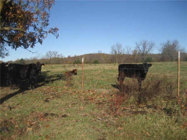 50 Ac Bowen  Blvd, Goshen, AR 72735 (MLS #1113971) :: HergGroup Arkansas