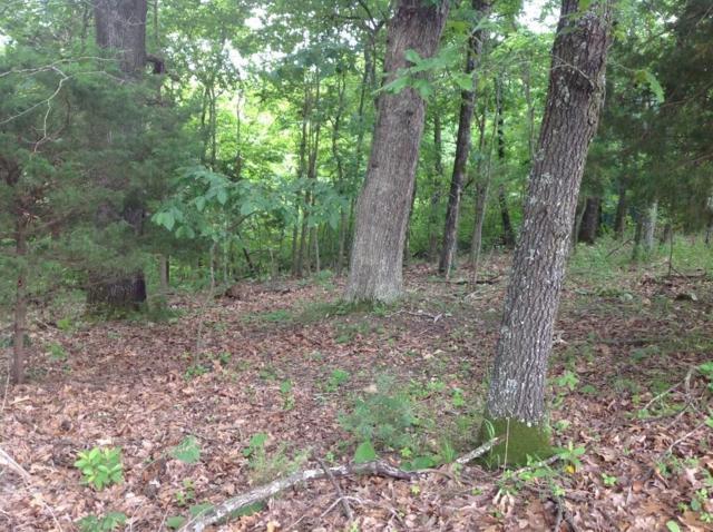 Lot 26 & Half-Lot 25 Stoney Ridge, Garfield, AR 72732 (MLS #1115663) :: HergGroup Arkansas