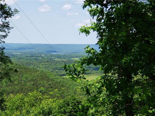 CR 220, Eureka Springs, AR 72631 (MLS #1115805) :: HergGroup Arkansas