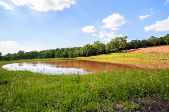 512 Hale  Rd, Goshen, AR 72735 (MLS #1117523) :: McNaughton Real Estate