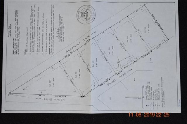 522-527 Appaloosa  Dr, Garfield, AR 72732 (MLS #1117861) :: HergGroup Arkansas