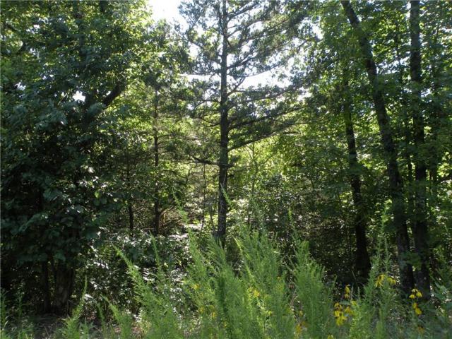 Woodsdale Dr, Holiday Island, AR 72631 (MLS #1120134) :: Five Doors Network Northwest Arkansas