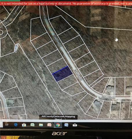 Cullen Hills Drive, Bella Vista, AR 72715 (MLS #1120486) :: Jessica Yankey   RE/MAX Real Estate Results