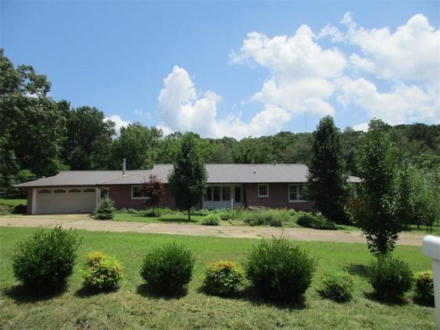 503 South Parrott  Dr, Huntsville, AR 72740 (MLS #1121543) :: McNaughton Real Estate