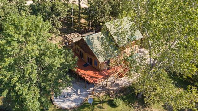 16031 Trace Branch  Rd, West Fork, AR 72774 (MLS #1124015) :: McNaughton Real Estate