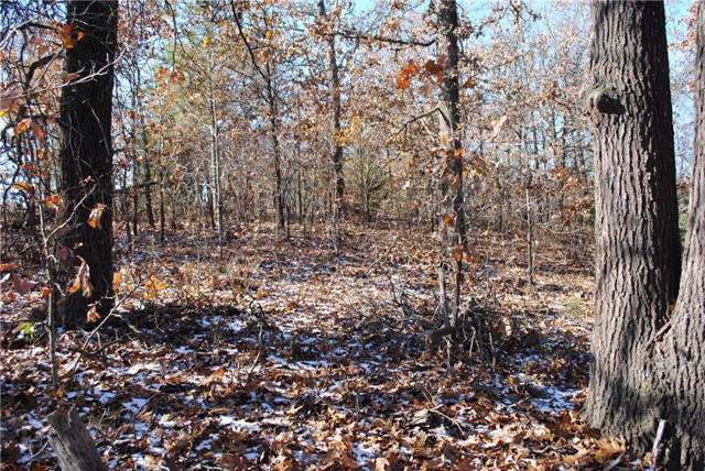 2.50 Ac Hickory Springs  Rd, Hindsville, AR 72738 (MLS #1132907) :: Five Doors Network Northwest Arkansas