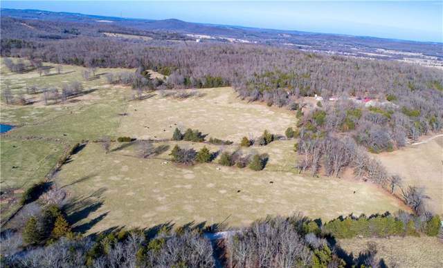 20 Acres Downing  Rd, Fayetteville, AR 72701 (MLS #1134047) :: McNaughton Real Estate