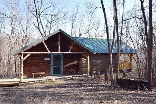 161 Domestic Tranquility  Ln, Eureka Springs, AR 72631 (MLS #1137619) :: McNaughton Real Estate