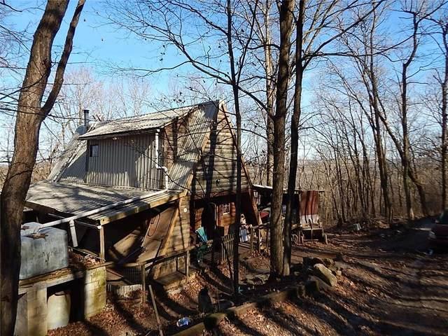 1224 County Road 246, Berryville, AR 72616 (MLS #1138731) :: Five Doors Network Northwest Arkansas