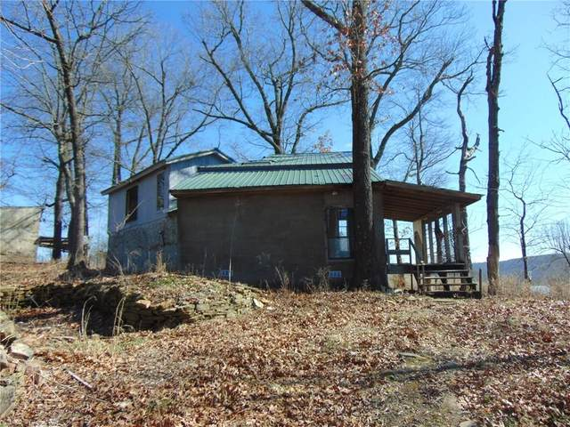 41 County Road 928, Green Forest, AR 72638 (MLS #1139328) :: McNaughton Real Estate