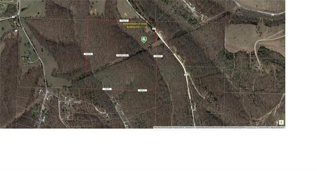 Sallie Dr, Rogers, AR 72756 (MLS #1139630) :: McNaughton Real Estate