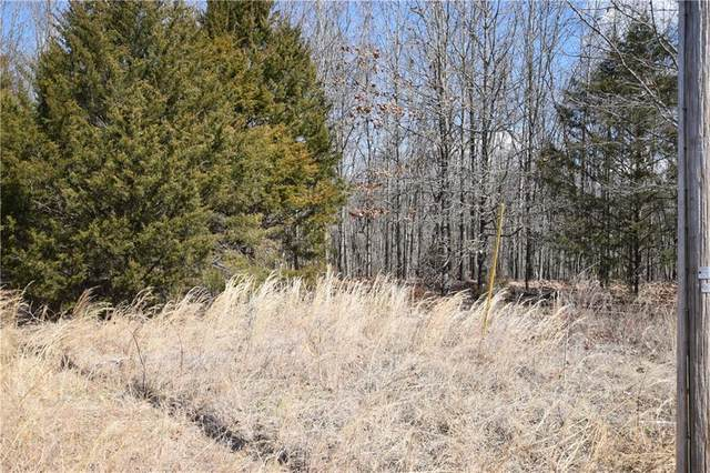 Posy Mountain Drive, Garfield, AR 72732 (MLS #1139822) :: McNaughton Real Estate