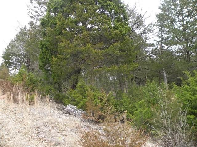 22 Deer Run Drive, Holiday Island, AR 72631 (MLS #1140078) :: Five Doors Network Northwest Arkansas