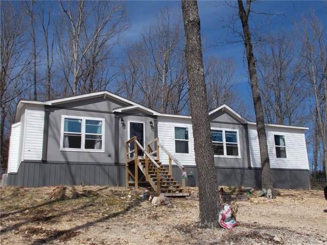 4029 Bear Hollow  Rd, Pineville, MO 64856 (MLS #1140421) :: McNaughton Real Estate