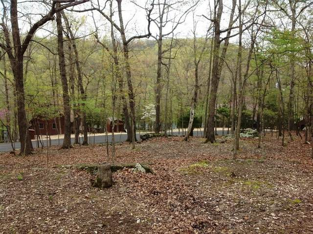 Lot 21 & 22 White Oak Drive, Garfield, AR 72732 (MLS #1144207) :: Five Doors Network Northwest Arkansas
