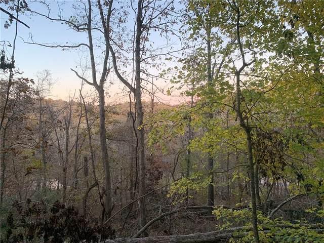 Kirkpatrick Lane, Bella Vista, AR 72715 (MLS #1144613) :: Annette Gore Team | RE/MAX Real Estate Results