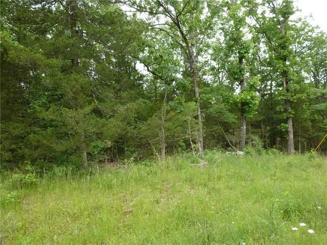 0 Ria Lane, Eureka Springs, AR 72631 (MLS #1146997) :: Annette Gore Team | RE/MAX Real Estate Results