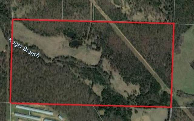 Downing (Wc 136), Fayetteville, AR 72701 (MLS #1147989) :: McNaughton Real Estate