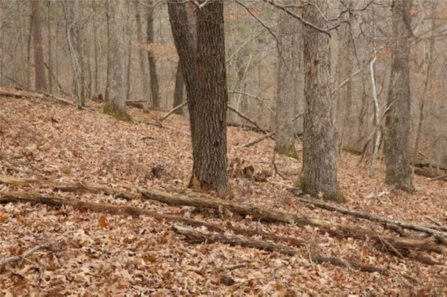 Lot 5,8 End Sweeps Lane, Rogers, AR 72756 (MLS #1150254) :: McNaughton Real Estate