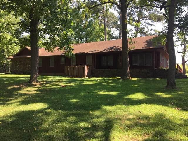 53 Swan Lane, Green Forest, AR 72638 (MLS #1150593) :: McNaughton Real Estate