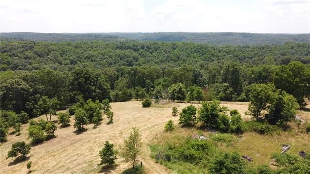 228 Rowland, Powell, MO 65730 (MLS #1150816) :: McNaughton Real Estate
