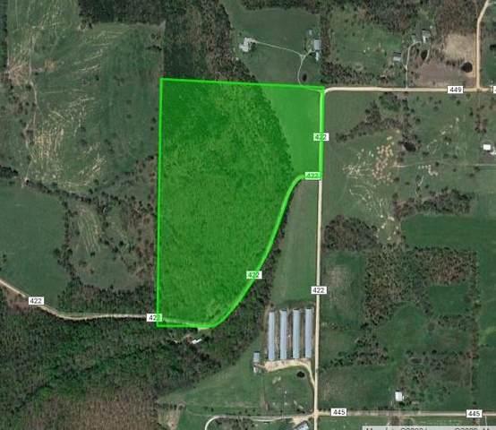 1503 County Road 447, Berryville, AR 72616 (MLS #1150821) :: Five Doors Network Northwest Arkansas