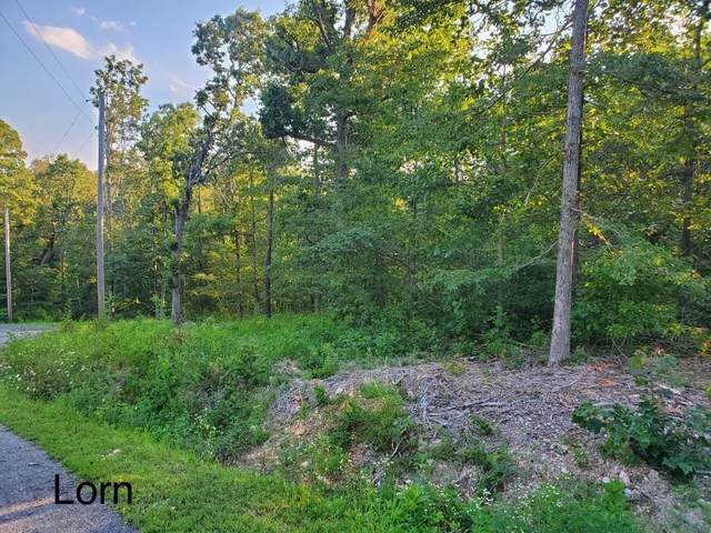 Lot 7 Lorn Lane, Bella Vista, AR 72715 (MLS #1153986) :: McNaughton Real Estate
