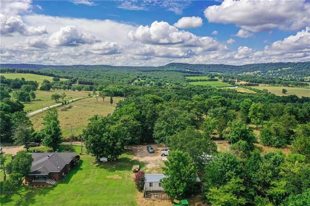 746 County Road 504, Berryville, AR 72616 (MLS #1154330) :: McMullen Realty Group