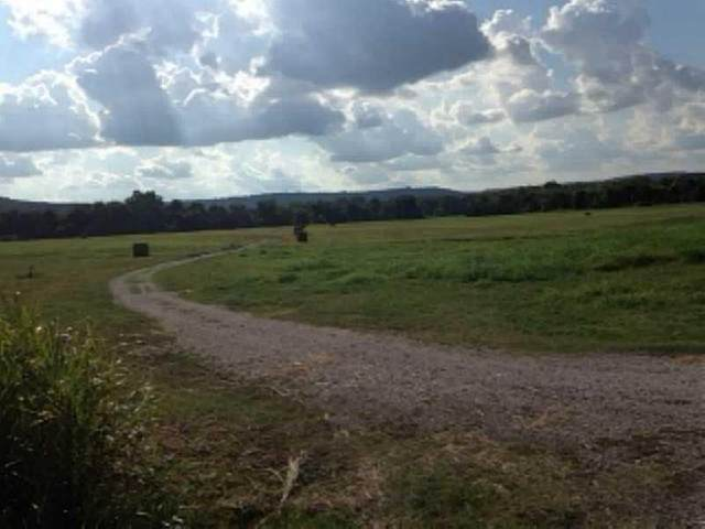 Dead Horse Mountian Road, Fayetteville, AR 72702 (MLS #1156859) :: McNaughton Real Estate