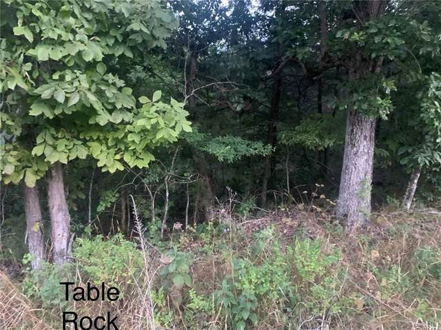 Table Rock Drive, Holiday Island, AR 72631 (MLS #1157593) :: McNaughton Real Estate