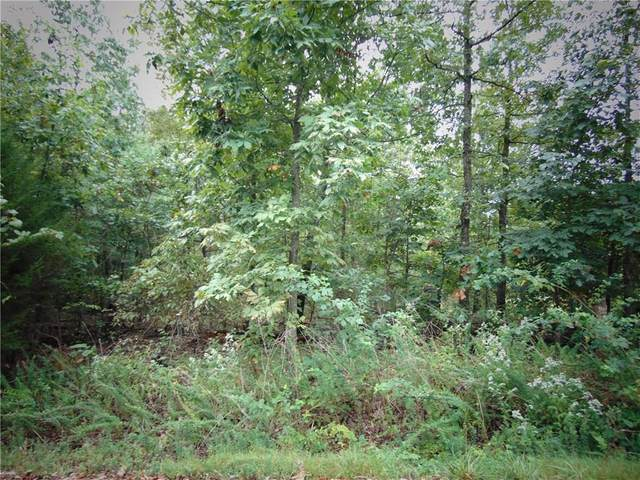 Dirleton Drive, Bella Vista, AR 72715 (MLS #1158484) :: McNaughton Real Estate