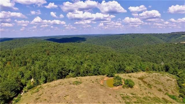 00 image Drive, Harriet, AR 72639 (MLS #1158519) :: Five Doors Network Northwest Arkansas