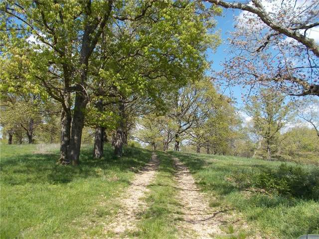 14 Cherry Bark Trail, Jane, MO 64856 (MLS #1159684) :: McNaughton Real Estate