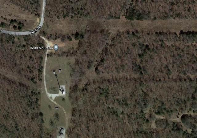 2499 Dodd Avenue, Springdale, AR 72764 (MLS #1160111) :: McNaughton Real Estate