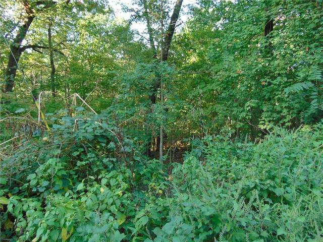 Harlow Lane, Bella Vista, AR 72715 (MLS #1160652) :: McNaughton Real Estate