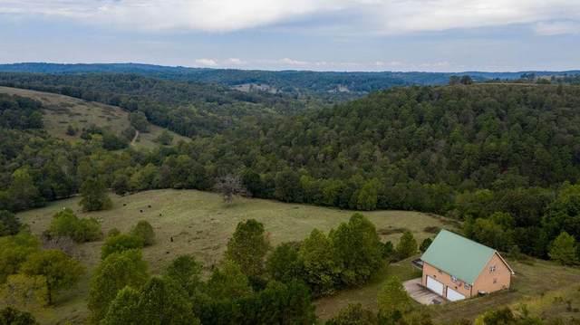 856 Cr 3231, Eureka Springs, AR 72632 (MLS #1160973) :: McNaughton Real Estate