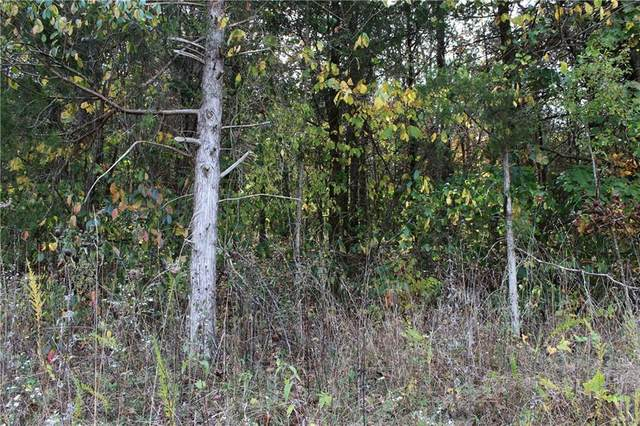 15 Wild Turkey Drive, Holiday Island, AR 72631 (MLS #1163915) :: Annette Gore Team | RE/MAX Real Estate Results