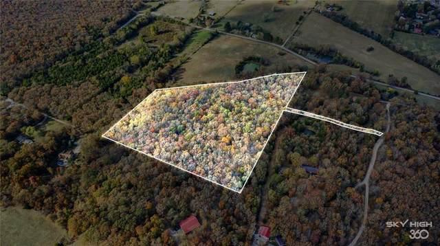 11.92 AC Smith Lane, Elkins, AR 72727 (MLS #1164376) :: McNaughton Real Estate