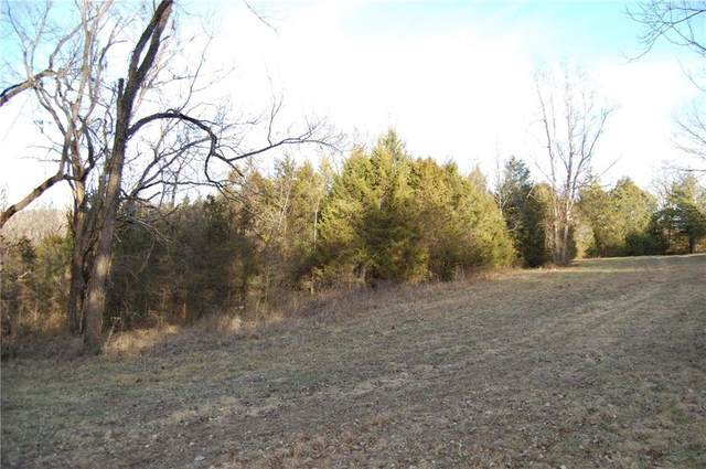 County Road 214, Eureka Springs, AR 72631 (MLS #1165182) :: Annette Gore Team   RE/MAX Real Estate Results